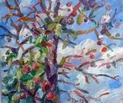 Alter Apfelbaum, 2019
