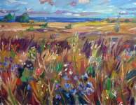 Feld an der Ostsee,2020
